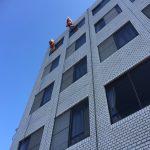 国分中央 外壁改修工事