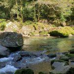 初めての雄川の滝