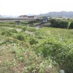 霧島市 天降川伐採 土木 松下建設