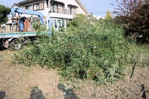 霧島市 天降川伐採 松下建設